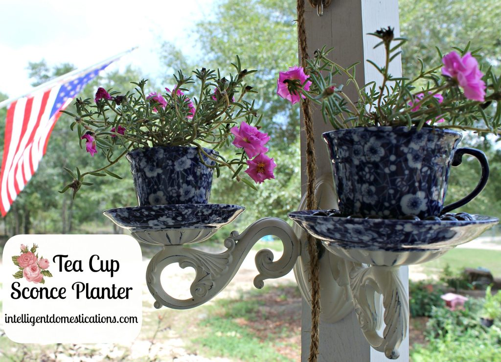 Upcycled Sconce into Tea Cup Sconce Planter.intelligentdomestications.com