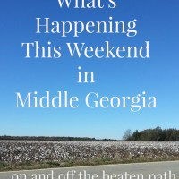 What's Happening This Weekend in Middle Georgia And Beyond