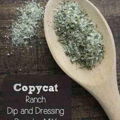 Copycat Ranch Dip and Dressing Powder Mix