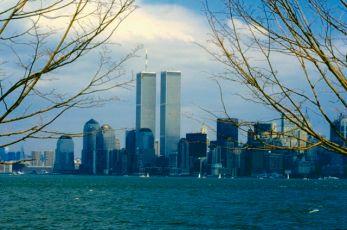 WTC_Trees