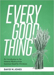 Every Good Thing by David W. Jones
