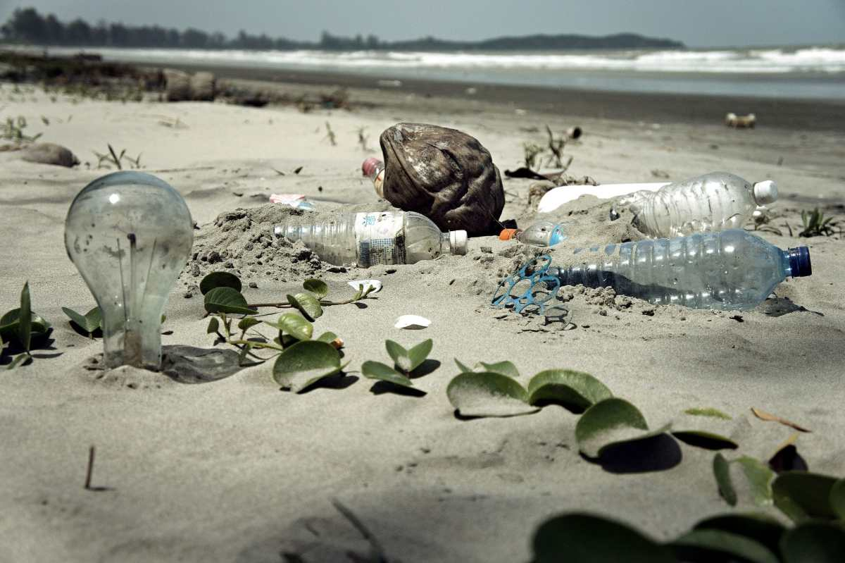 The Problem of Plastic: Sustainable Ways to Live a Sustainable Life