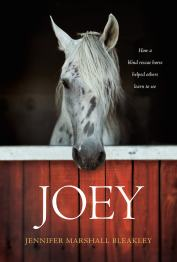 Joey by Jennifer Bleakley