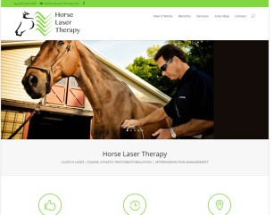 Horse Laser Therapy