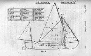 whaler-2
