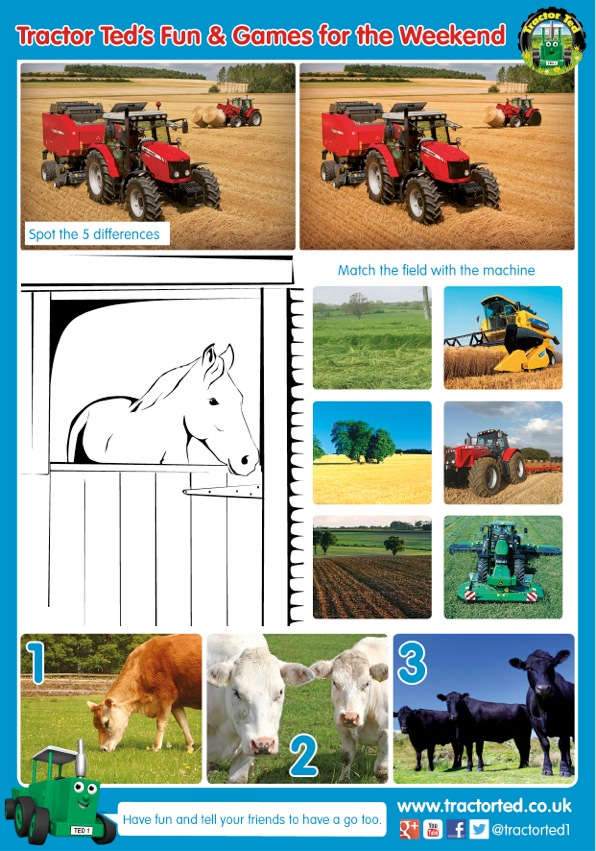 Tractor Ted Farm Spring printable worksheet - In The Playroom