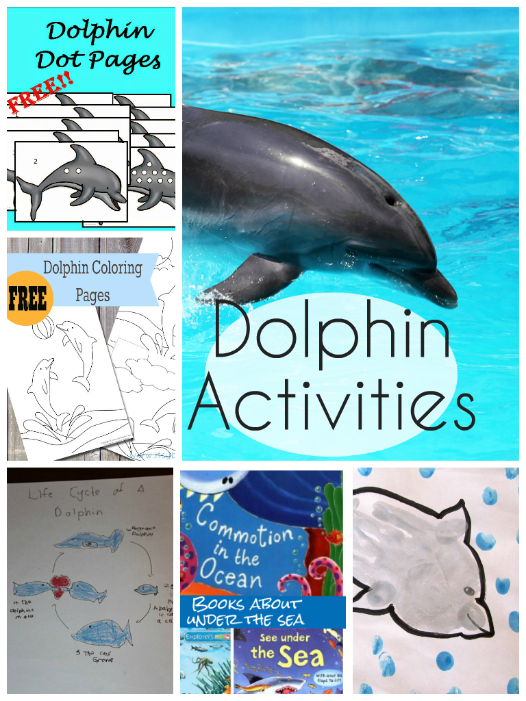 dolphin activities and printables for kids, plus recommendations for under the sea themed books