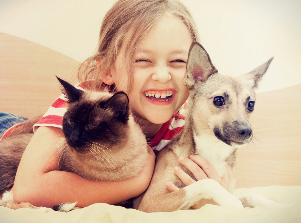 5 tips for taking family photos with your pets. Taking a photo with a cat and a dog