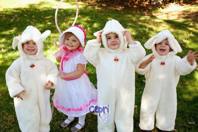 Little Bo Peep found her Sheep with overlaty