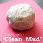 CLEANMUDPIN