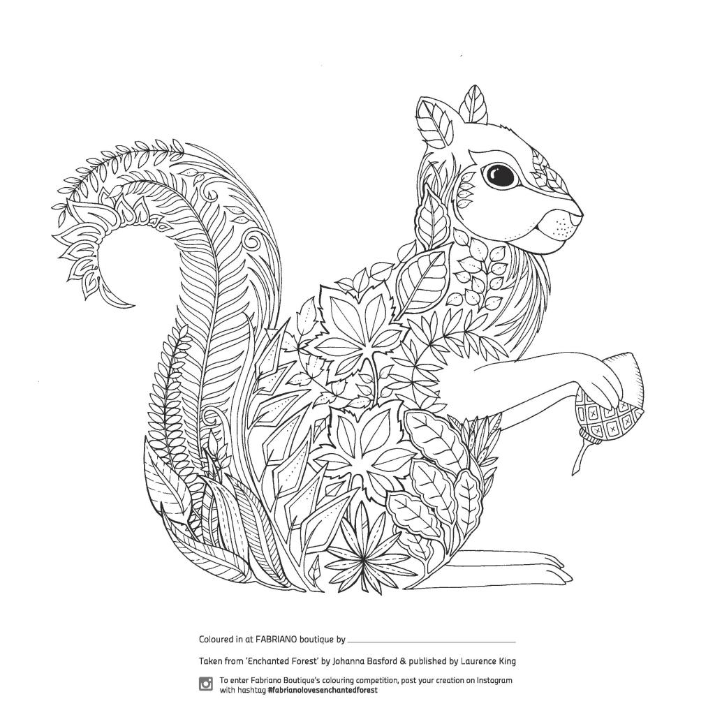 Enchanted Forest grown up colouring page in a detailed squirrel design