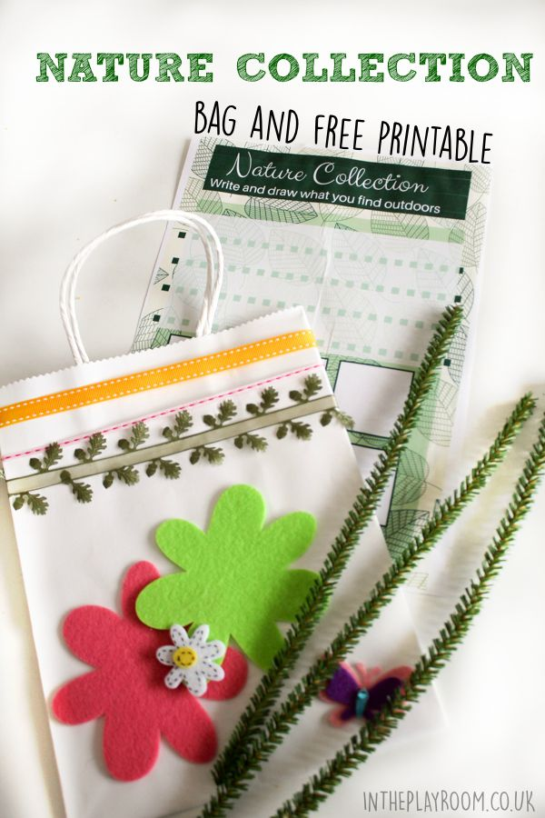 nature collection bag and free printable for kids to document their nature finds (leaves, stones, sticks, flowers etc)