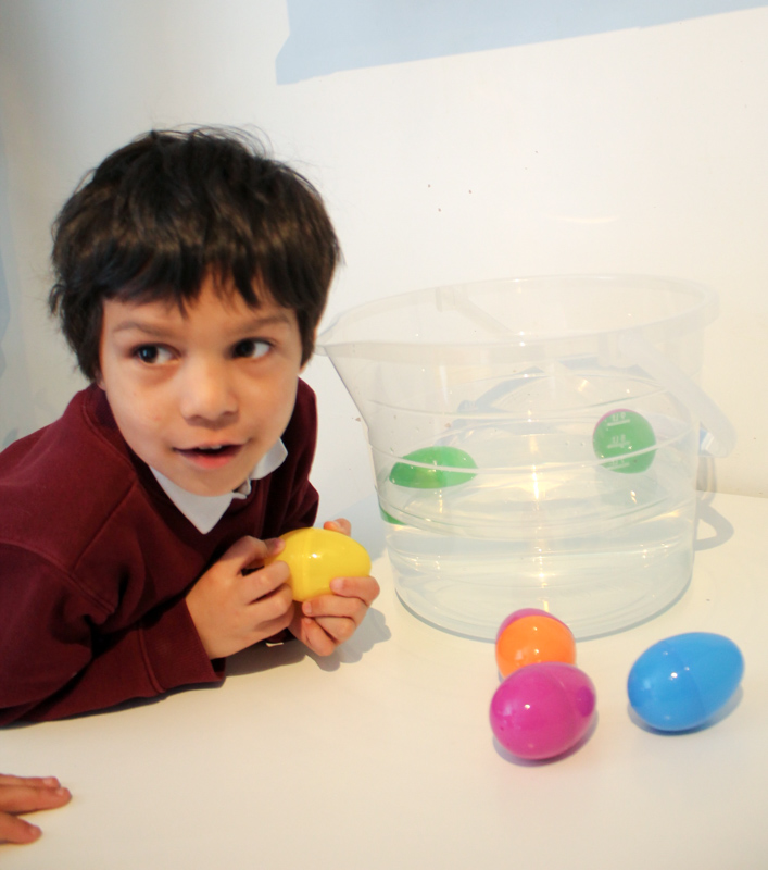 sink or float science experiment for kids