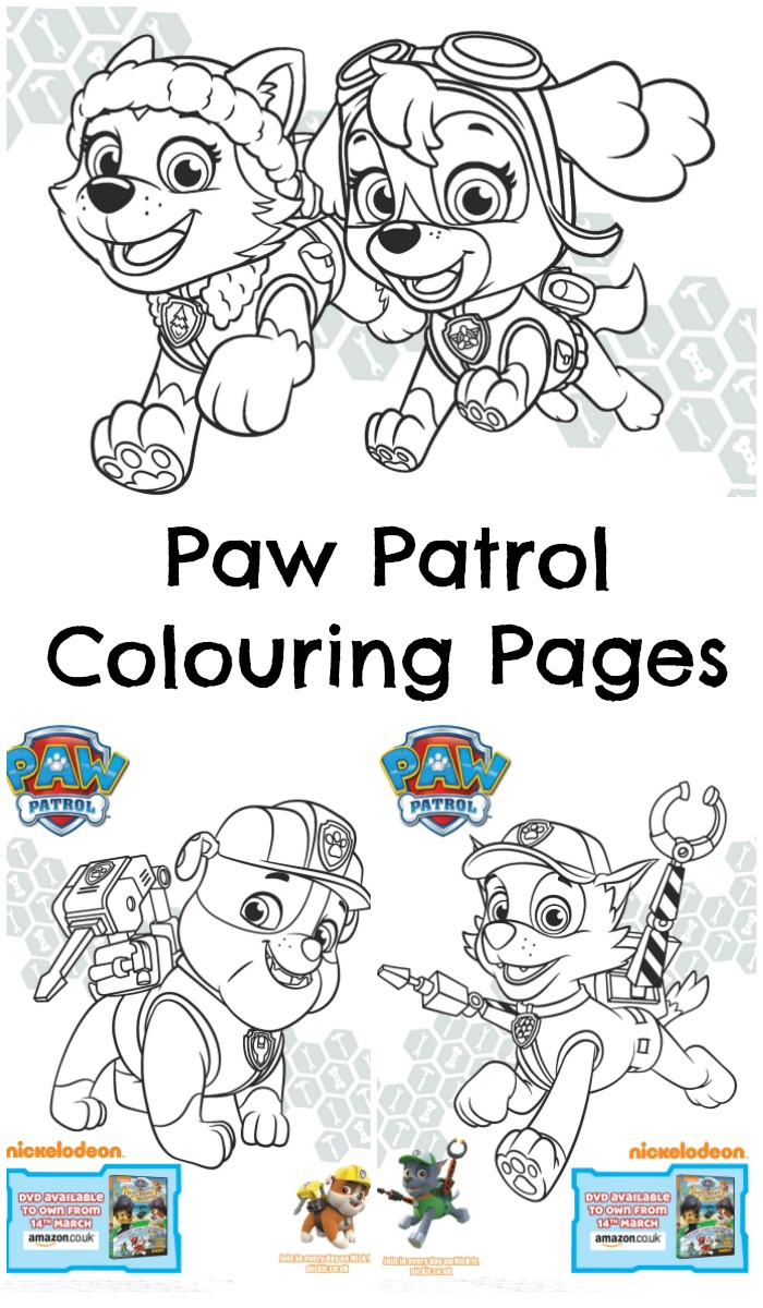 Paw Patrol The New Pup Coloring Pages : Paw patrol pups and the pirate treasure colouring page