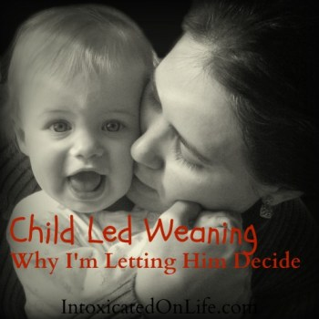 Child Led Weaning- Why I'm Letting Him Decide