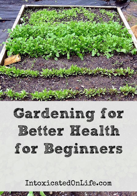 Gardening for Better Health for Beginners on IntoxicatedOnLife.com
