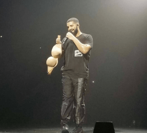 fan throws her bra at drake during concert