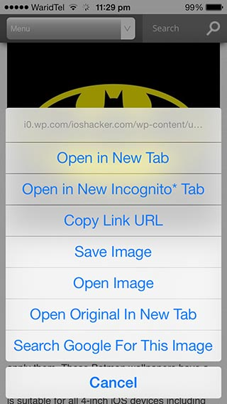 Chrome iOS image search