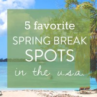 5 Favorite Spring Break Spots in the US
