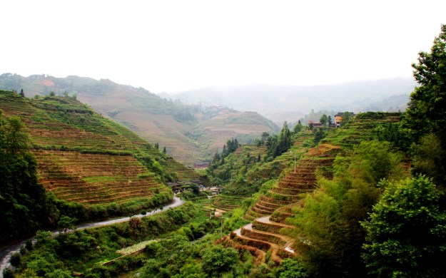 Dragon's Backbone Rice Terraces, Longsheng China