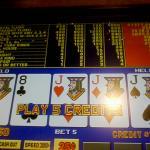 Las Vegas: Pretty Bellagio Conservatory Pictures