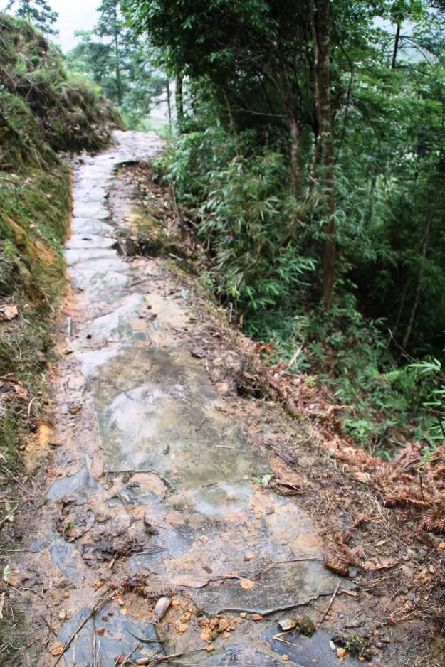 slippery walkway Dragon's Backbone Rice Terraces, Longsheng China