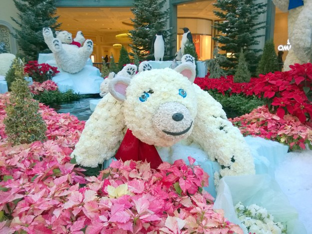Bellagio Las Vegas conservatory brain surgery bear on the mend