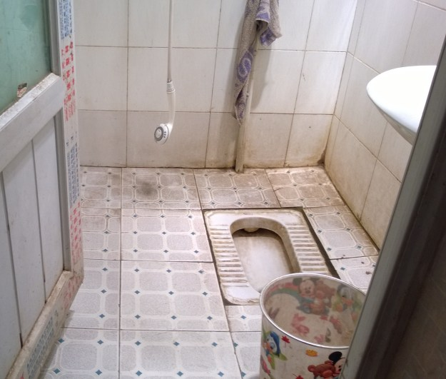 Dege China disgusting bathroom
