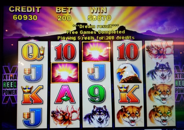 Buffalo slot machine win