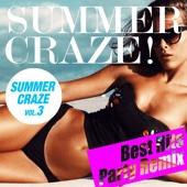 Vuducru - SUMMER CRAZE HITS! Vol.3 (夏まで待てないParty Remix Best) アートワーク