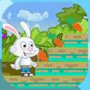 soufiane cherraj - De Little Bunny Run Pro アートワーク