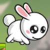 LE HUNG - White Tail Bunny Lost In Mushroom Forest アートワーク