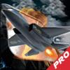 Carolina Vergara - A Battle For Dominating Sky Pro : Aircraft アートワーク