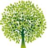 yilan kong - Resolution Tree アートワーク