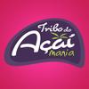 Pablo Reis - Tribo do Açaí Mania アートワーク