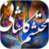 Amir Hessam Haidari Adli - دیوان اشعار محتشم کاشانی アートワーク