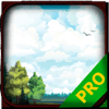 Nguyen Van Dong - PRO - Paradise Never Game Version Guide アートワーク