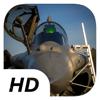 Paulina Miazga - Silver Cutzers - Flight Simulator アートワーク