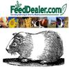 Michael Stachiw - Guinea Pig Breeding Calculator アートワーク