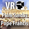 IUW - VR Virtual Reality press360 First Palm Sunday with the Pope Francis アートワーク