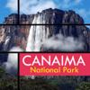 K GOUSIYA BANU - Canaima National Park Travel Guide アートワーク