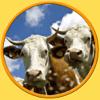 Tgame-girls - 私の子供の農場の動物 - 広告なし アートワーク