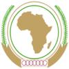 Tamer Arafat - African Flags アートワーク