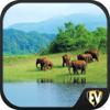 Edutainment Ventures LLC - Wildlife Sanctuaries Guide アートワーク