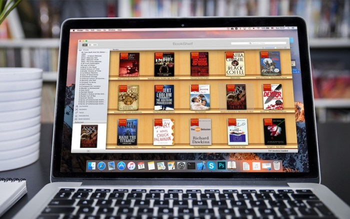 3_BookReader.jpg