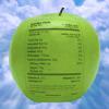 George Mincu - List of Antioxidants アートワーク