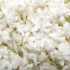 fragrancelife.ru