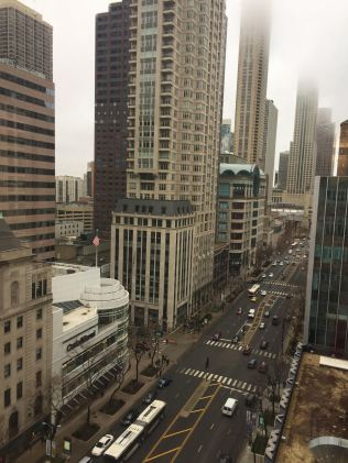 ISGMH's beautiful view of Michigan Avenue.