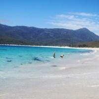 Heavenly Tasmania