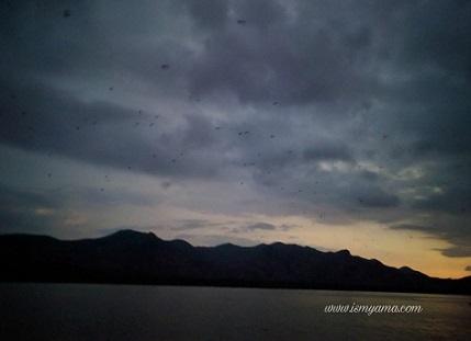 Penampakan Pulau Kalong. Lihat kan di langitnya banyak kelelawar terbang